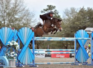 1.50m Win for Ammeretto (s.Numero Uno) in Tryon